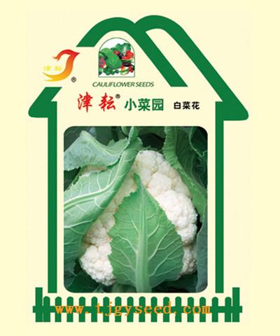 【天津耕耘】白菜花小菜园/200粒 -西兰花种子